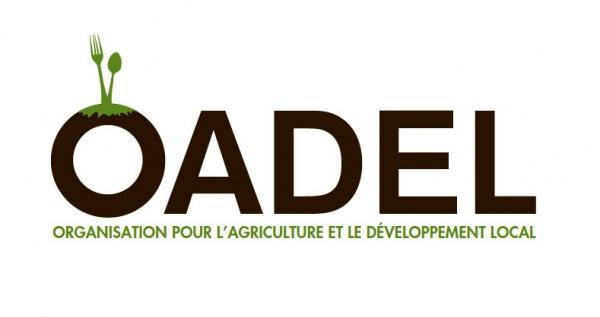 Consommation des produits locaux : des acteurs à pieds d'œuvre pour soutenir la souveraineté alimentaires des pays africains