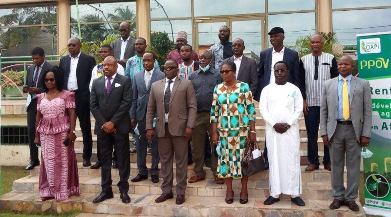 Togo : L'OAPI renforce et promeut le système de protection des obtentions végétales dans ses Etats membres